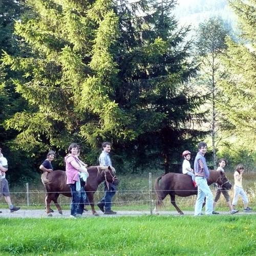 Ponyreiten auf dem Unterhöfenhof - Ferienwohnungen Schwarzwald Titisee Jostal