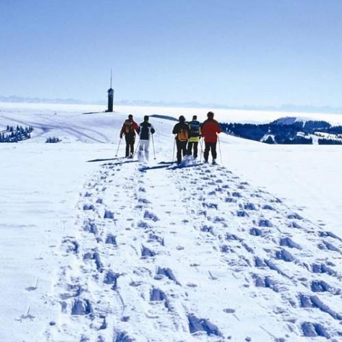 Schneeschuhwandern auf dem Feldberg (Bild: Hochschwarzwald Tourismus Gmbh)