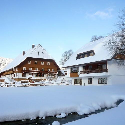 Der Unterhöfenhof - Ferienwohnungen Schwarzwald Titisee Jostal