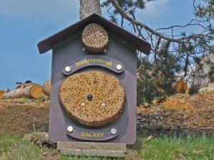 Neues Insektenhotel für Insekten