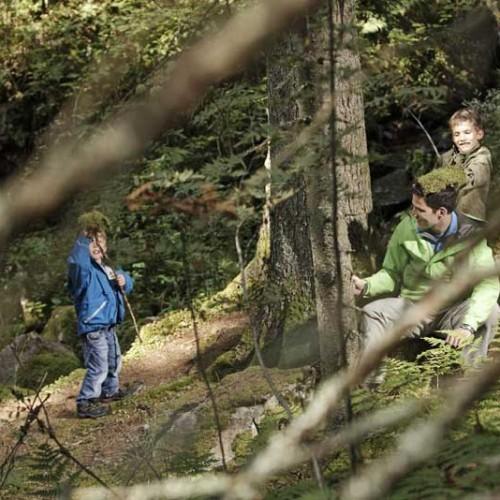 Ideal zum Wandern (Bild: Hochschwarzwald Tourismus Gmbh)