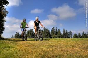 Paradies für Mountainbiker (Bild: Hochschwarzwald Tourismus Gmbh)