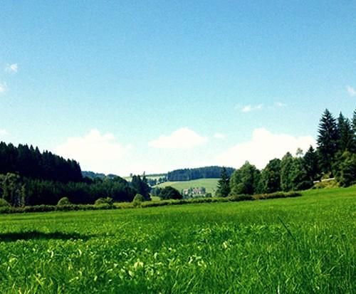 Natur erleben - Unterhöfenhof - Ferienwohnungen Schwarzwald Titisee Jostal