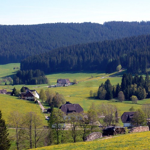 Blick auf den Unterhöfenhof - Ferienwohnungen Schwarzwald Titisee Jostal
