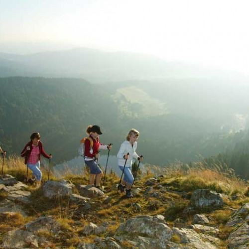 Panoramablick (Bild: Hochschwarzwald Tourismus Gmbh)